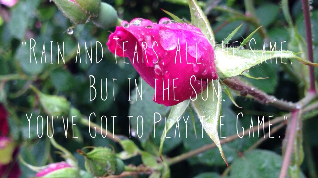Colored Photograph of Rose Bud with Lyrics from Rain and Tears by Aphrodite's Child.